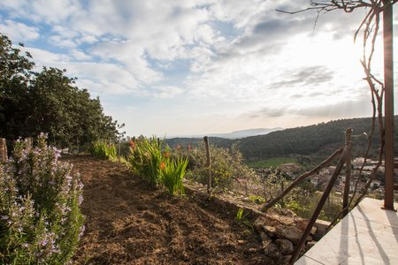 Charming house with amazing views in Bunyola